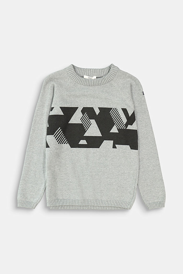Graphic print jumper, 100% cotton