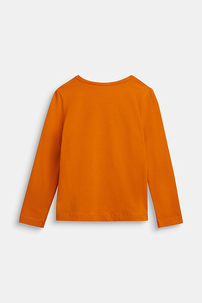 Long sleeve top with a glitter print, RUST ORANGE, detail image number 1