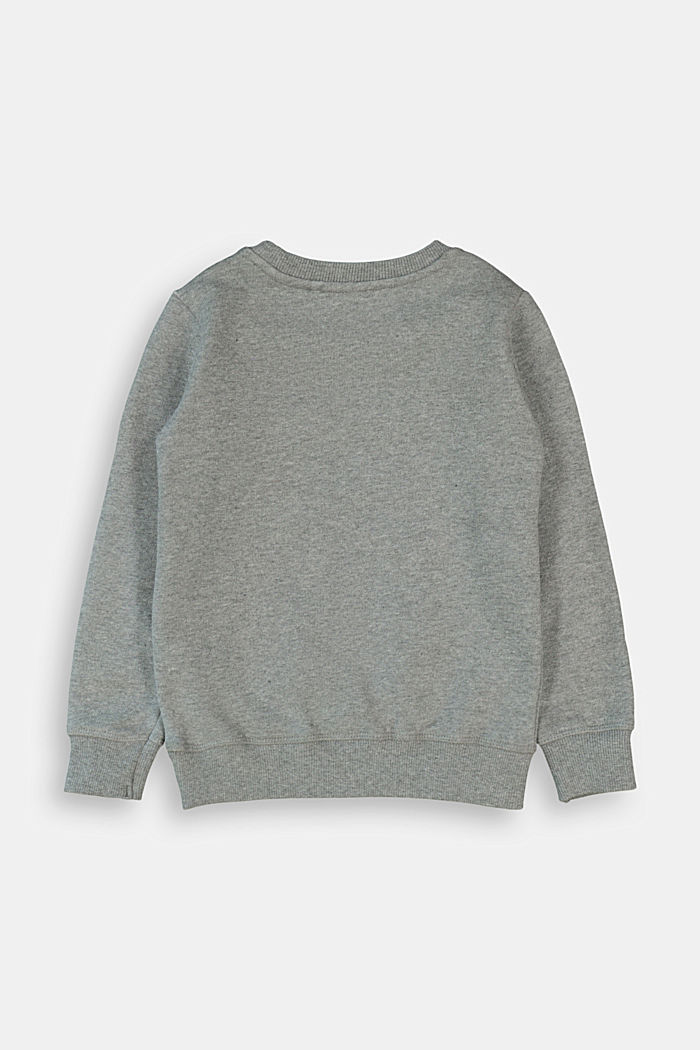 Sweatshirt mit Applikation, 100% Baumwolle
