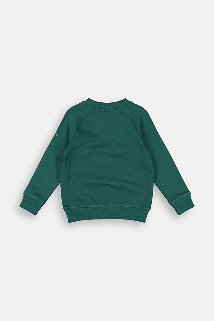Basic sweatshirt made of 100% cotton, FOREST, detail image number 1