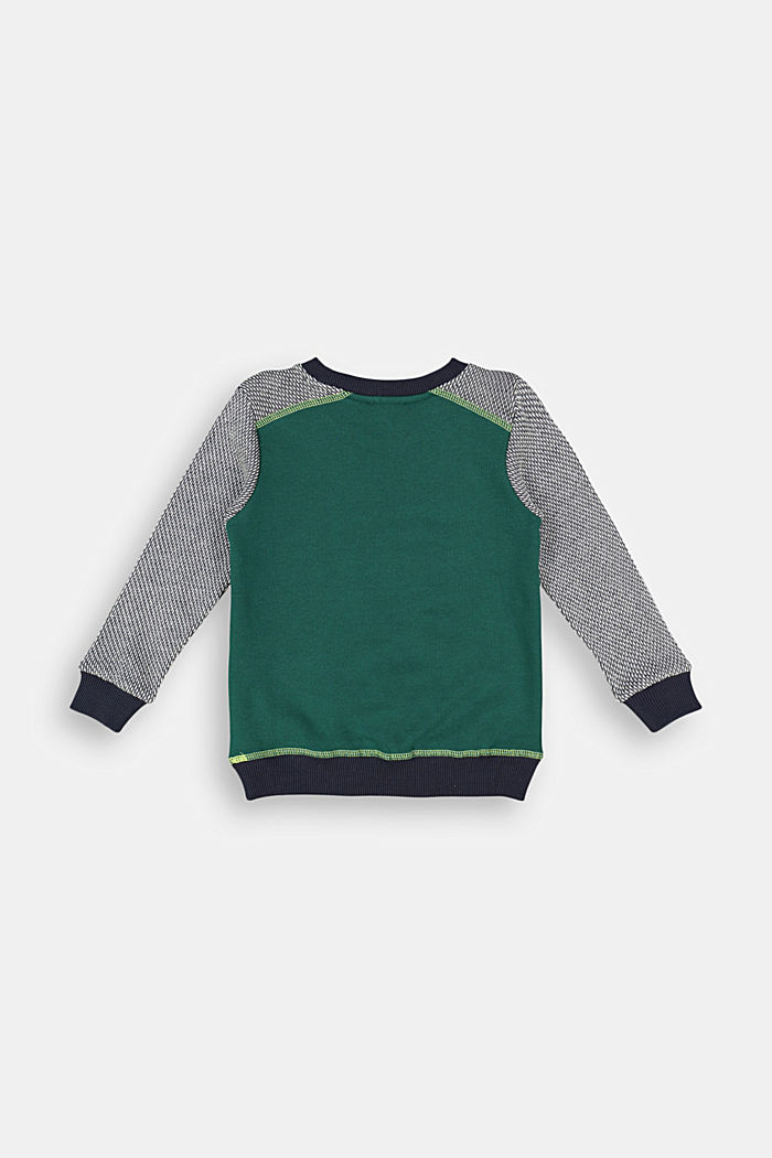 Sweatshirt with jacquard sleeves