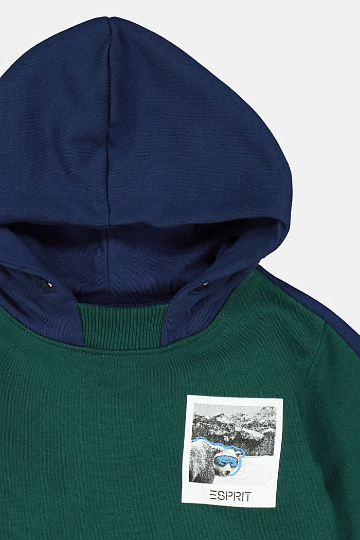 Sweat-Hoodie aus 100% Baumwolle, FOREST, detail image number 2