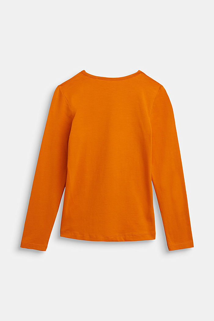 Long sleeve top with a pumpkin print, RUST ORANGE, detail image number 1