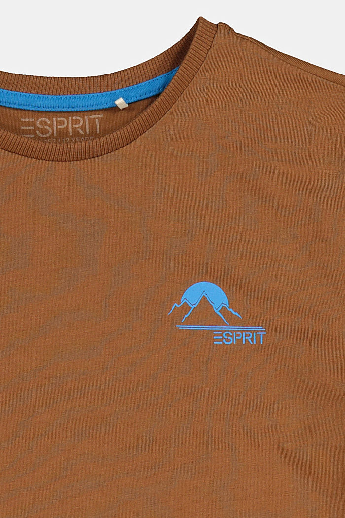 Jersey T-shirt in 100% cotton, TOFFEE, detail image number 2