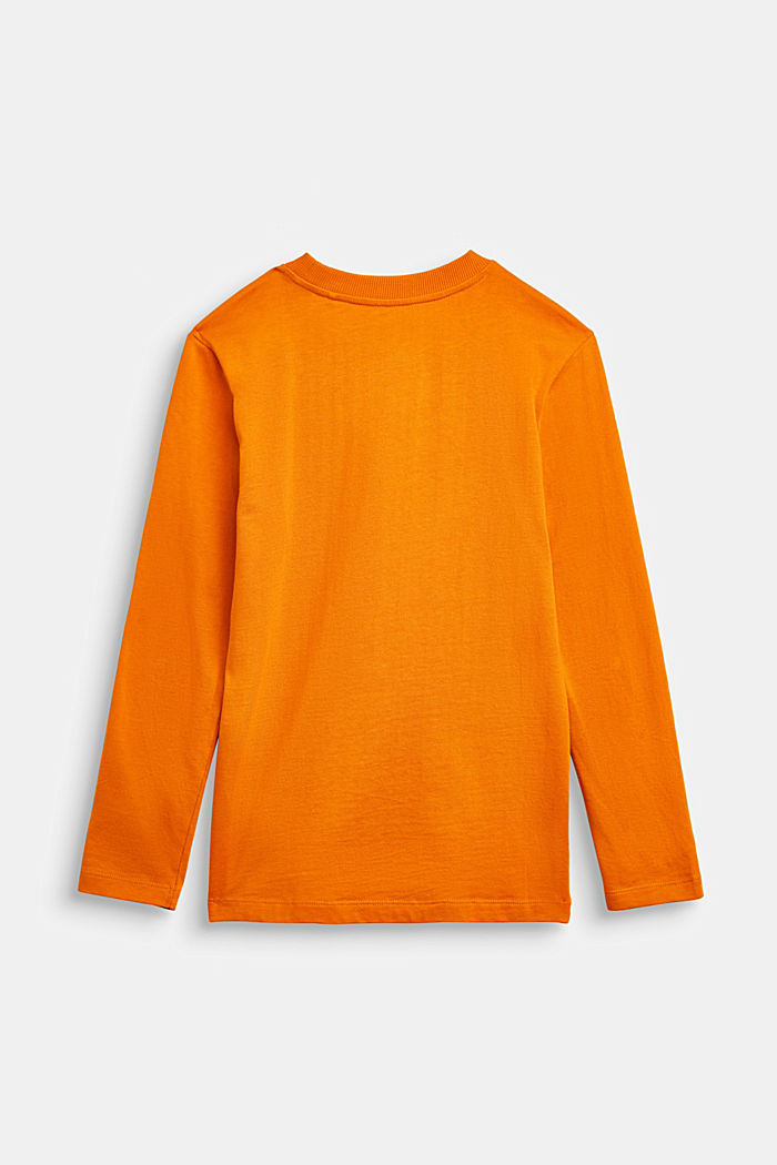 Long sleeve top with a Halloween print, RUST ORANGE, detail image number 1