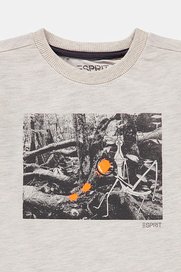 Printed T-shirt made of 100% cotton, SILVER, detail image number 2