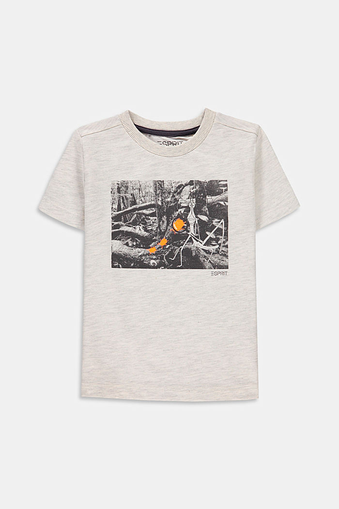 Printed T-shirt made of 100% cotton, SILVER, detail image number 0