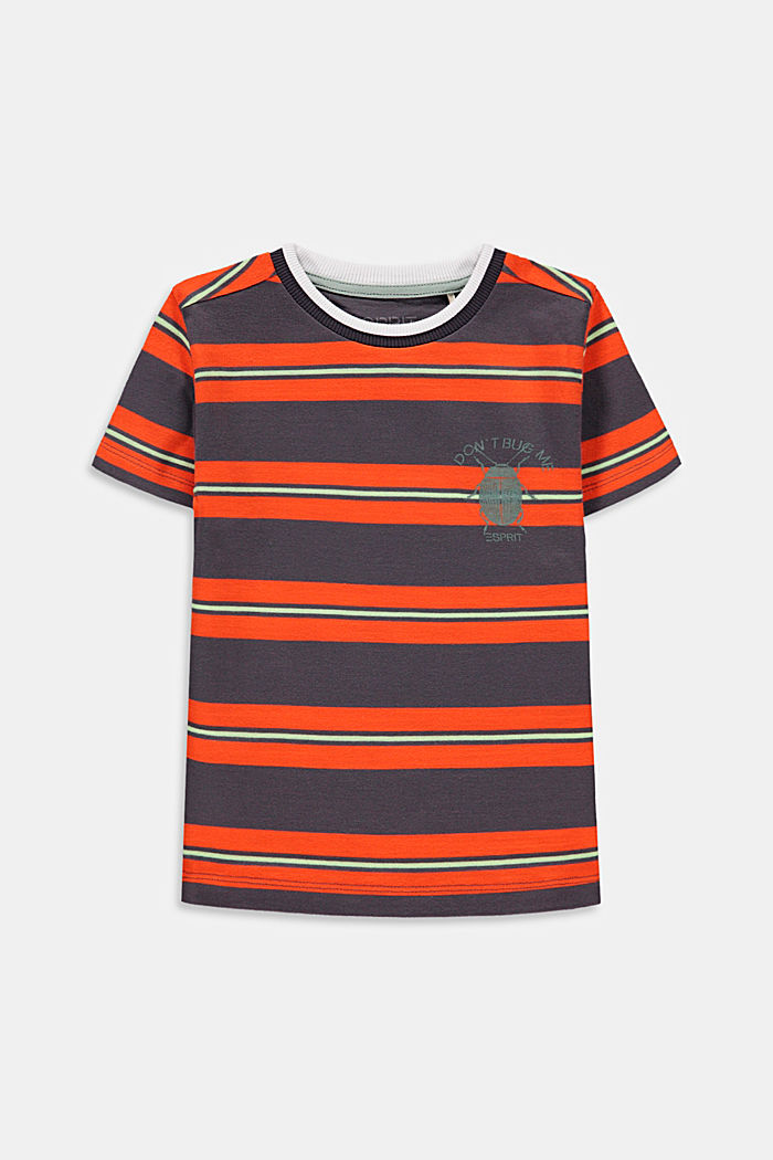 Striped T-shirt with a beetle print
