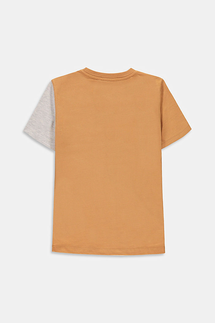 Colour block T-shirt, 100% cotton, CARAMEL, detail image number 1