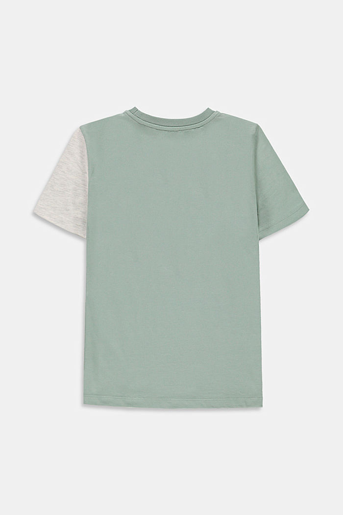 Colour block T-shirt, 100% cotton