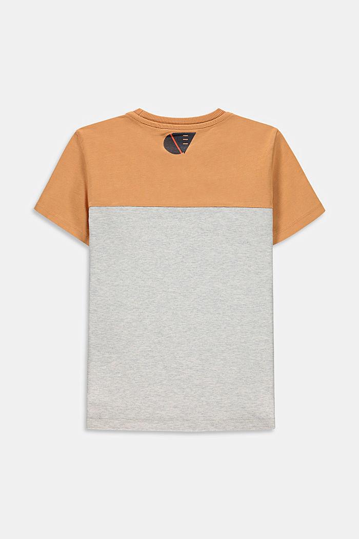 Colour block T-shirt van 100% katoen