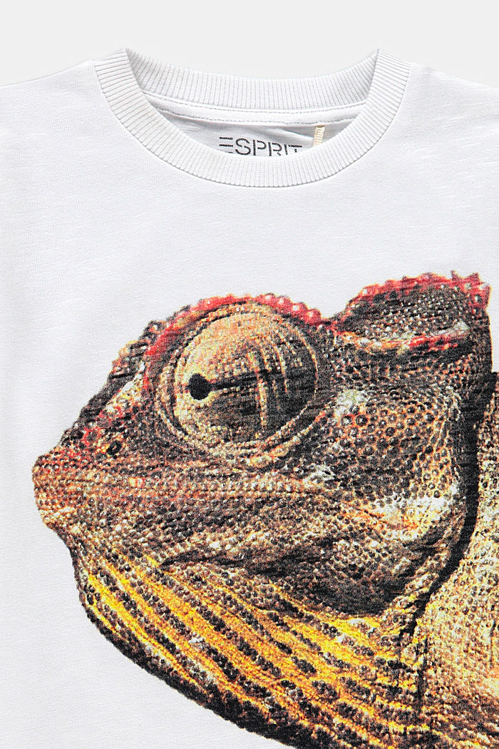 T-Shirt mit Fotoprint, 100% Baumwolle, WHITE, detail image number 2