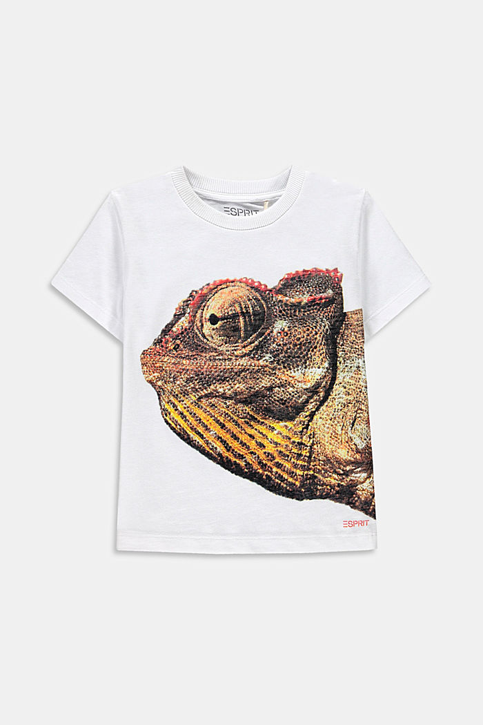 T-Shirt mit Fotoprint, 100% Baumwolle, WHITE, detail image number 0