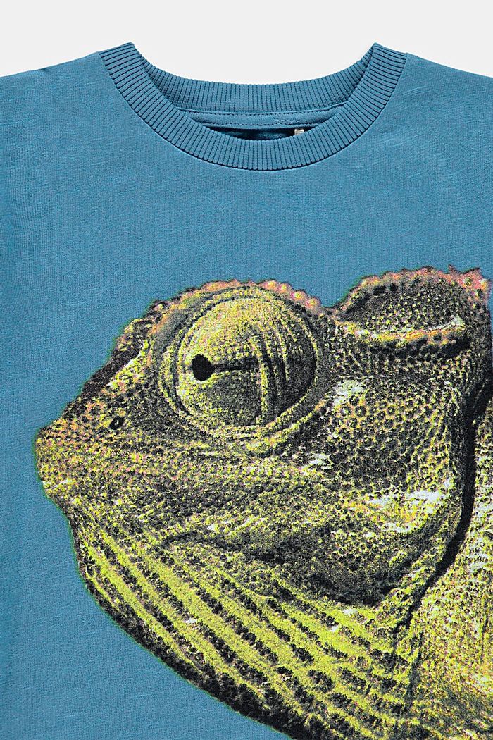 T-Shirt mit Fotoprint, 100% Baumwolle, GREY BLUE, detail image number 2