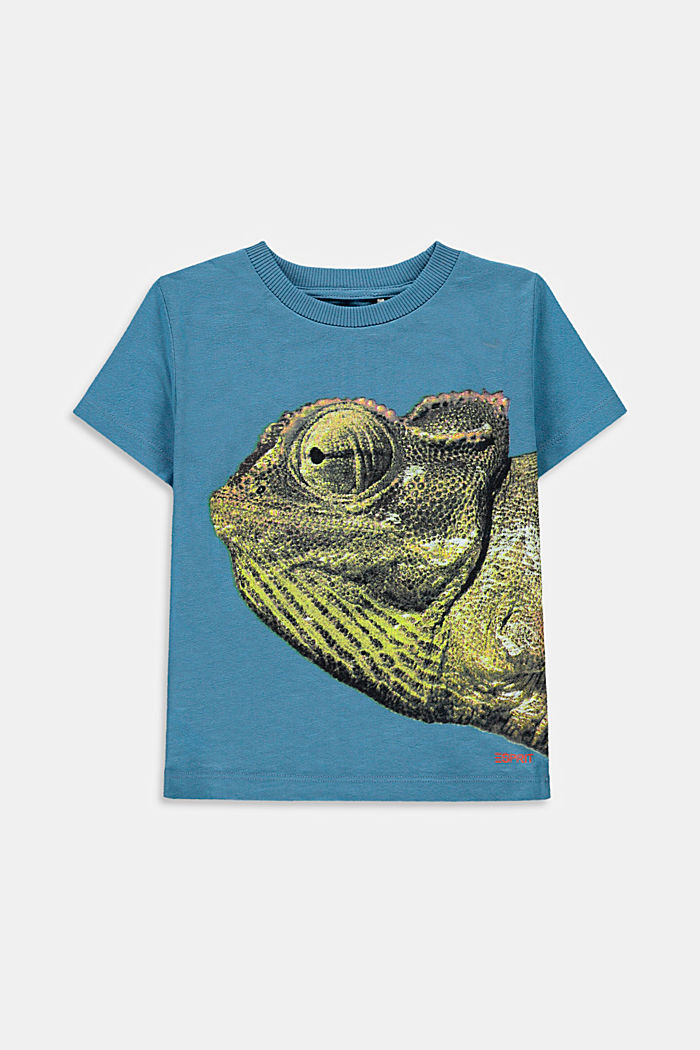 T-shirt met fotoprint, 100% katoen