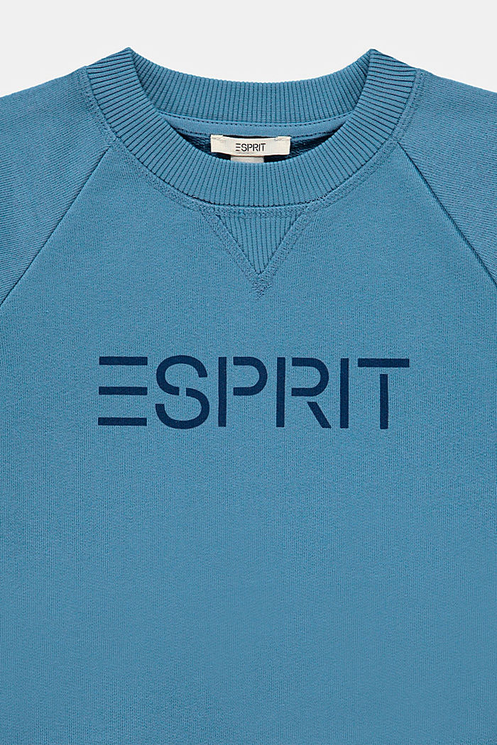 Felpa con logo in 100% cotone, GREY BLUE, detail image number 2