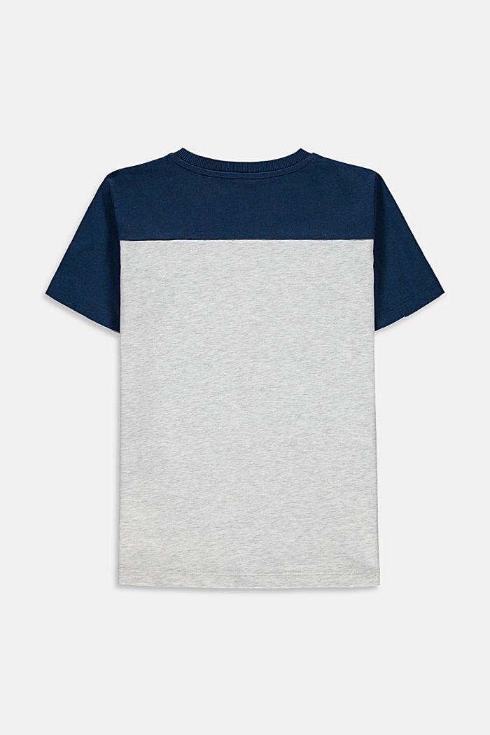 Camiseta con bloques de color en 100 % algodón