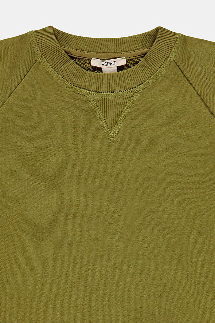 Basic Sweatshirt aus 100% Baumwolle, LEAF GREEN, detail image number 2