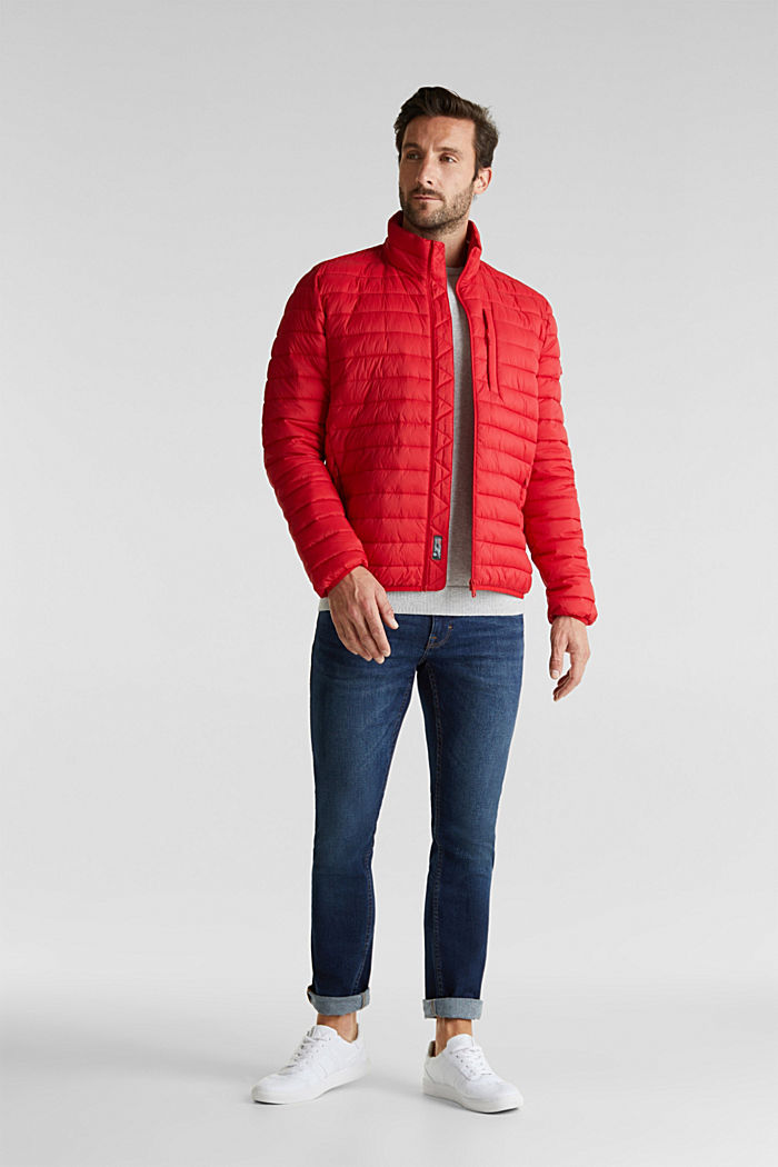 Quilted jacket with 3M™ Thinsulate™ filling, RED, detail image number 1