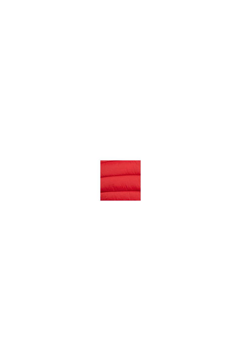 Gerecycled: gewatteerde jas met 3M™ Thinsulate™, RED, swatch