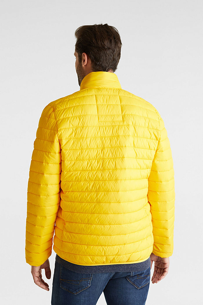 Quilted jacket with 3M™ Thinsulate™ filling, YELLOW, detail image number 3