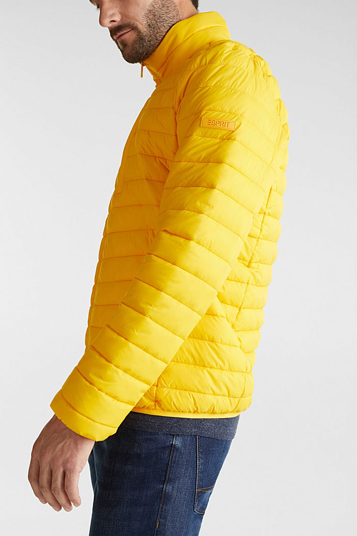 Quilted jacket with 3M™ Thinsulate™ filling, YELLOW, detail image number 2