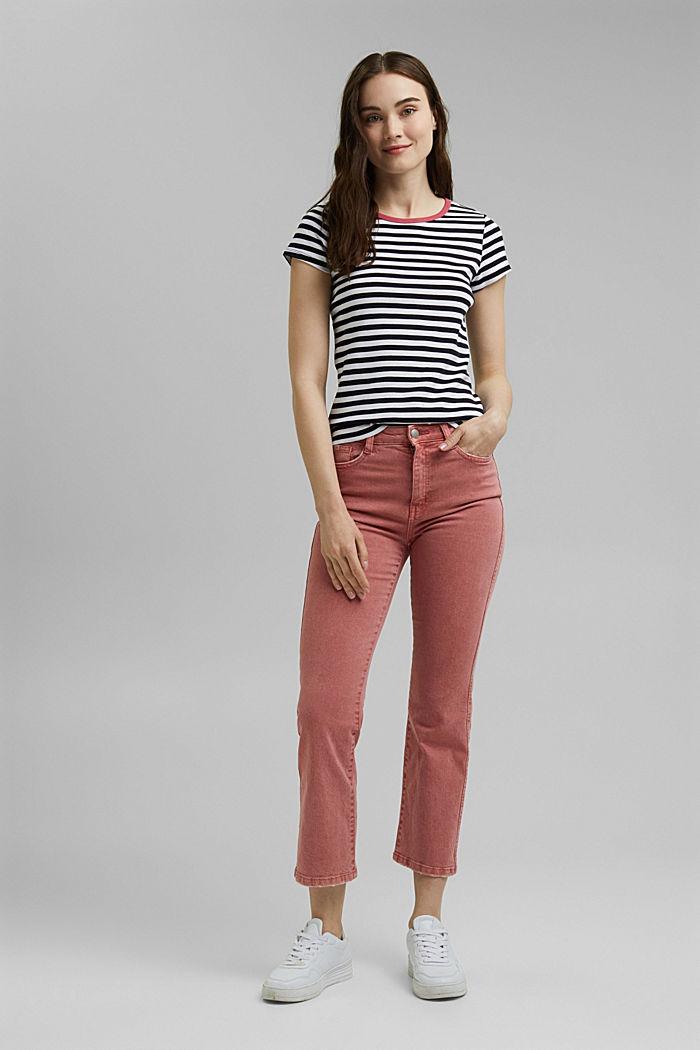 Striped T-shirt, 100% organic cotton, NAVY, detail image number 1