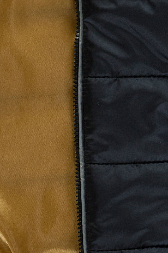 Steppjacke mit Kapuze, BLACK, detail image number 2