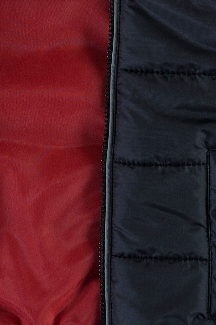 Padded quilted jacket with a hood, BLACK, detail image number 2
