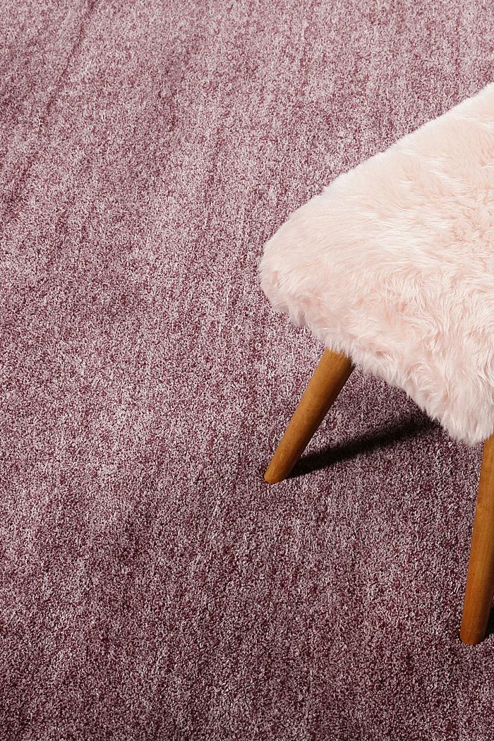 Hochflor-Teppich in vielen Trendfarben, BERRY, detail image number 3