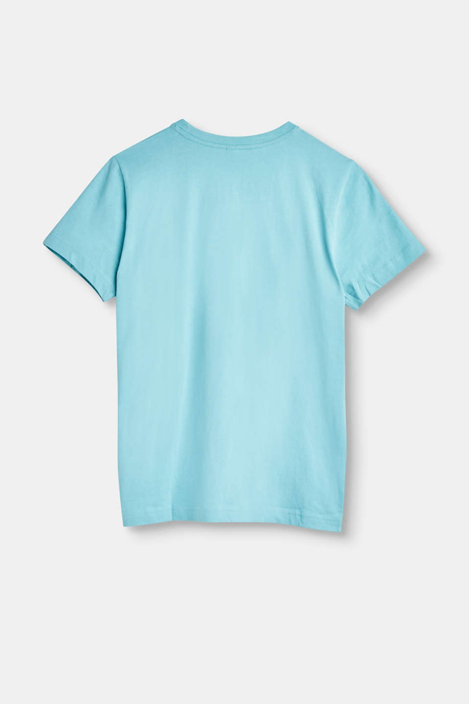 Cotton T-shirt with a front print