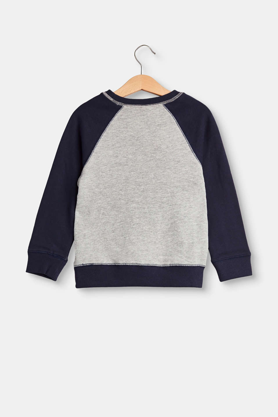 Sweatshirt with a soft flock print