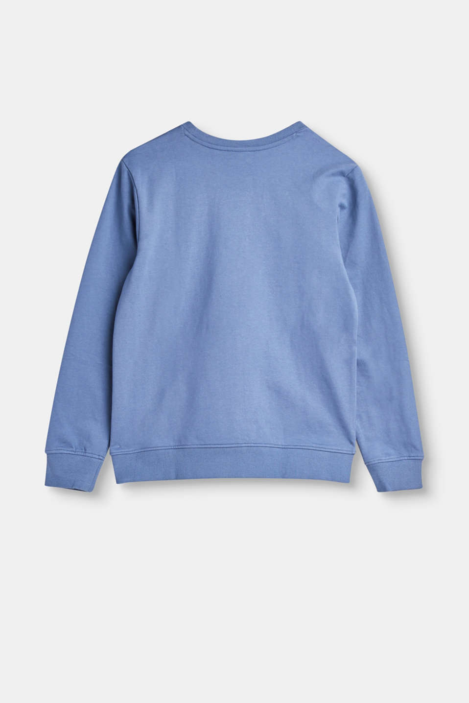 Sweatshirt with a large front print