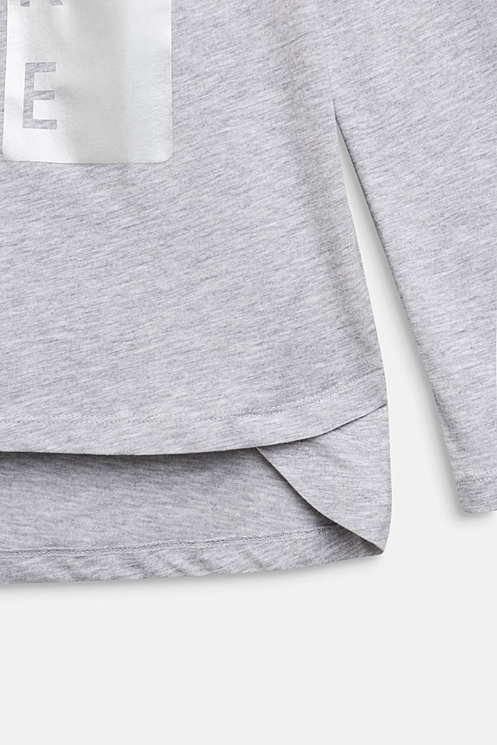 Longsleeve met statement print, LCHEATHER SILVER, detail image number 2