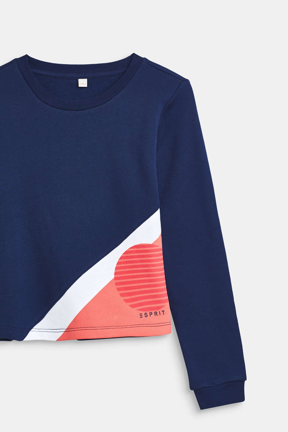 Sweatshirt with colour blocks, 100% cotton, LCMARINE BLUE, detail image number 2