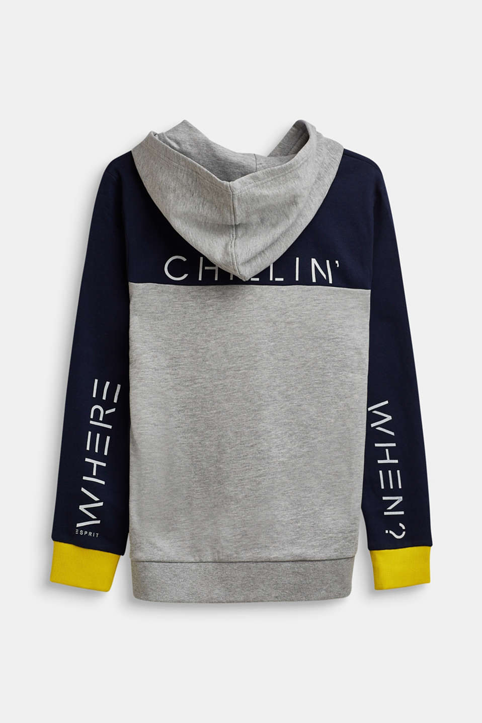 Sweatshirt hoodie with a statement print, LCHEATHER SILVER, detail image number 1