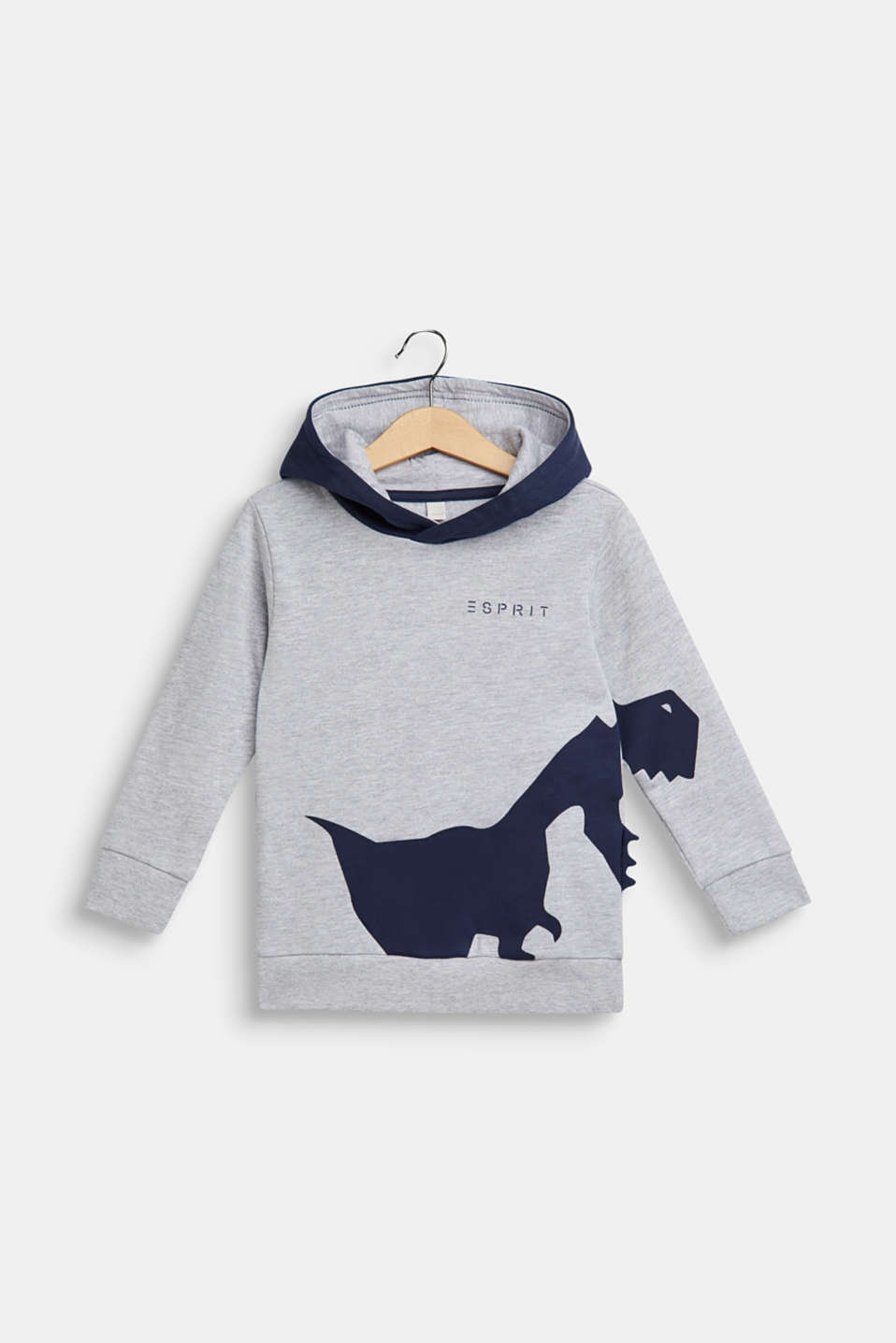 Hoodie sweatshirt with dinosaur appliqué, HEATHER SILVER, detail image number 0