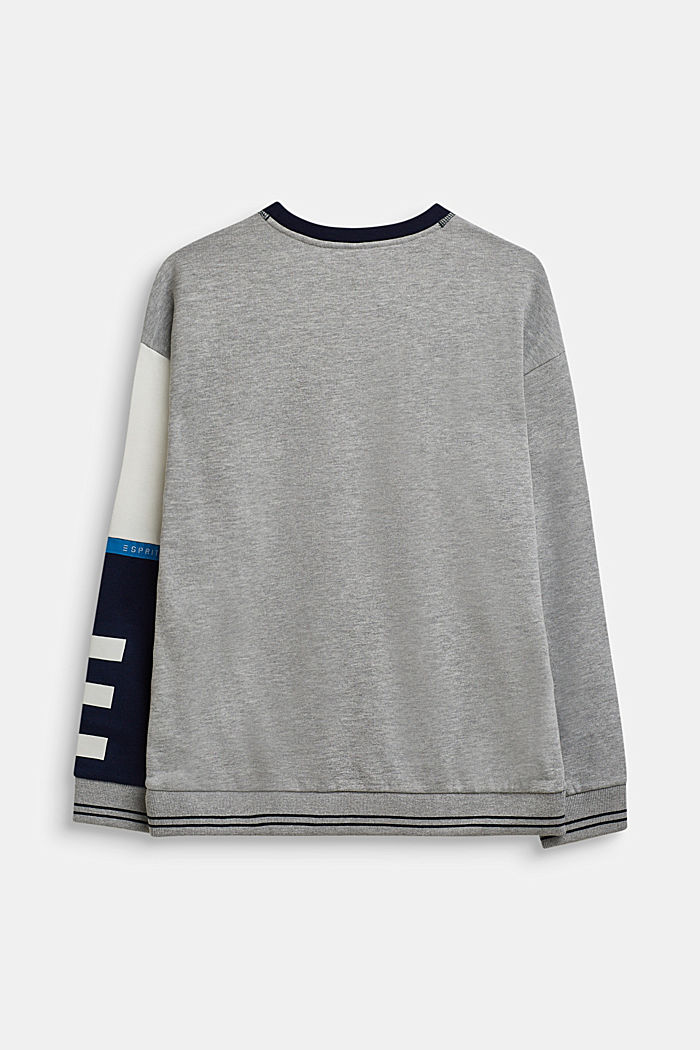 Sweatshirt mit Kontrast-Ärmel, LCHEATHER SILVER, detail image number 1