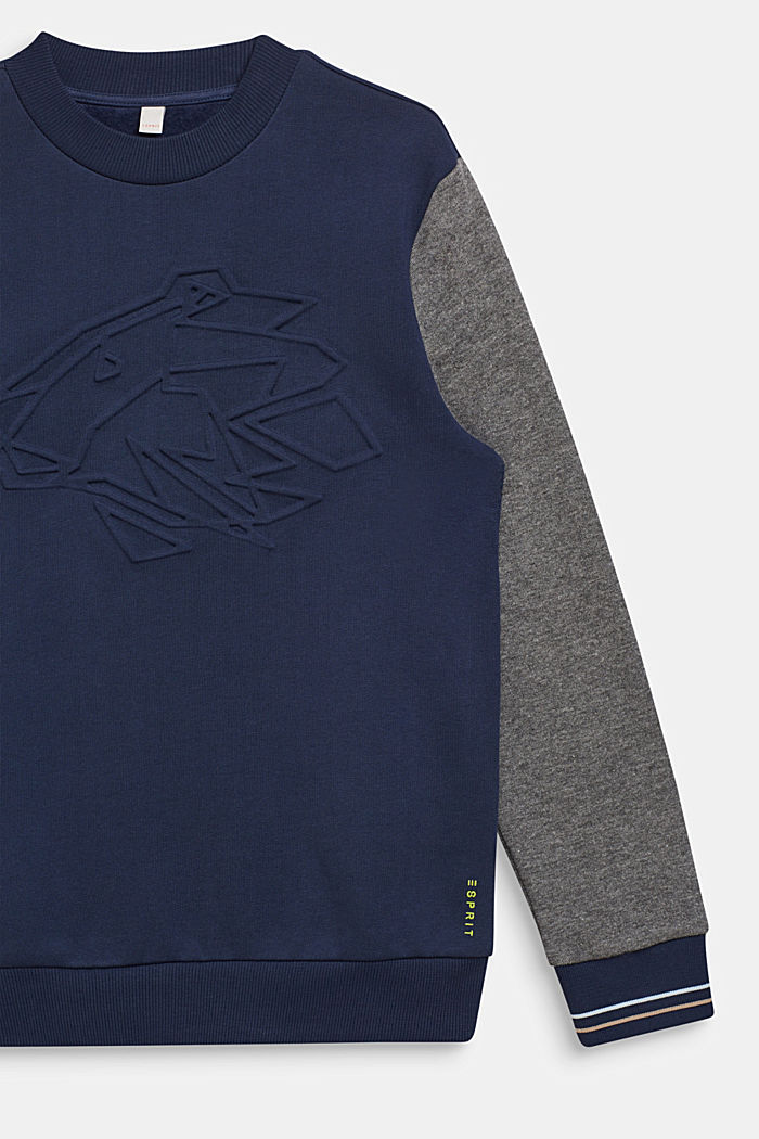 College sweatshirt with a 3D motif, LCMIDNIGHT BLUE, detail image number 2
