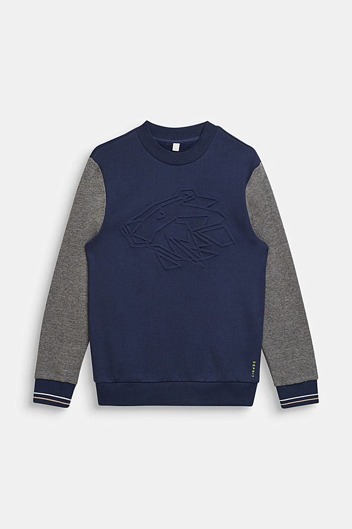 College sweatshirt with a 3D motif, LCMIDNIGHT BLUE, detail image number 0