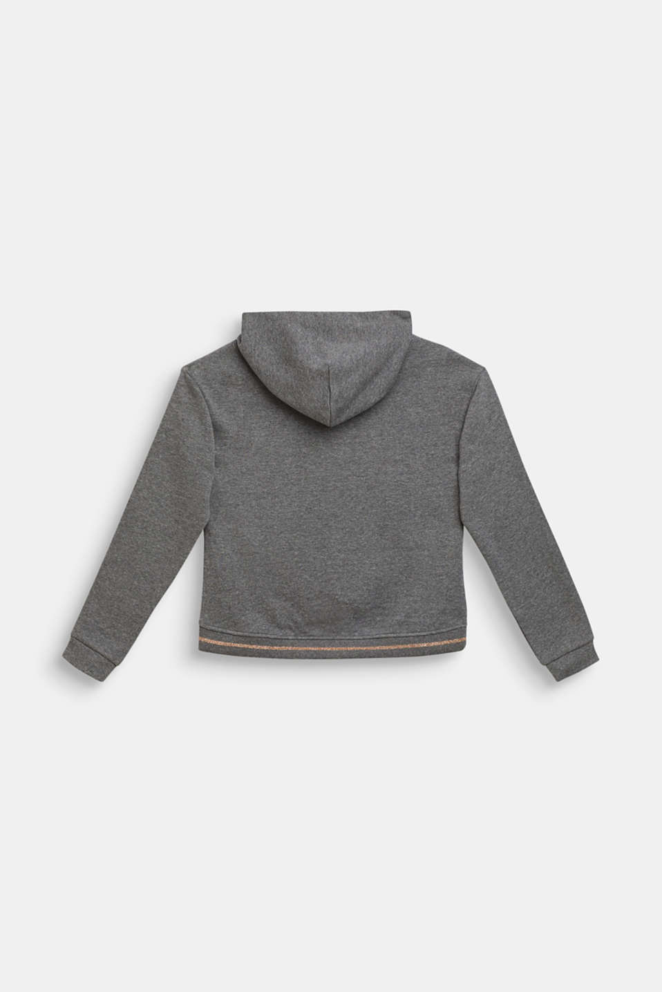 Sweatshirts, LCDARK HEATHER G, detail image number 1