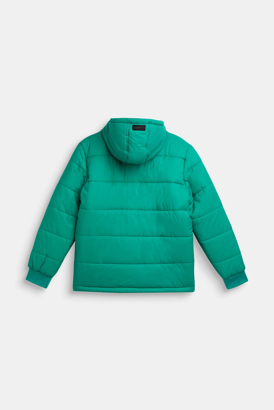 Padded jacket with a hood, LCMID GREEN, detail image number 1