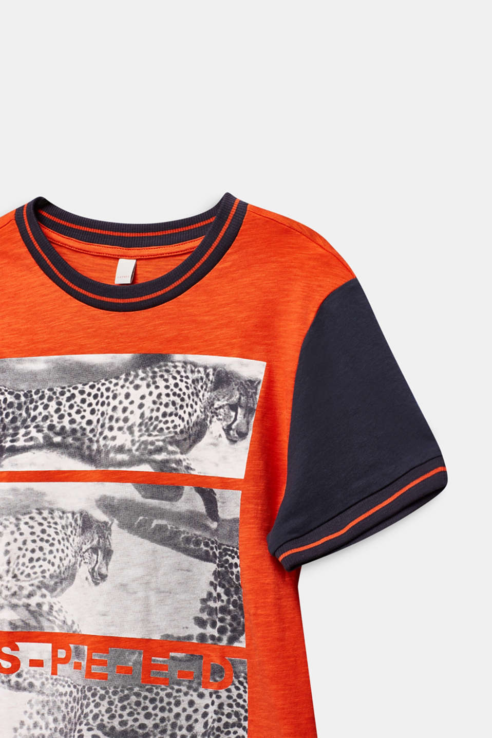 Photo print T-shirt, 100% cotton, LCTANGERINE, detail image number 2