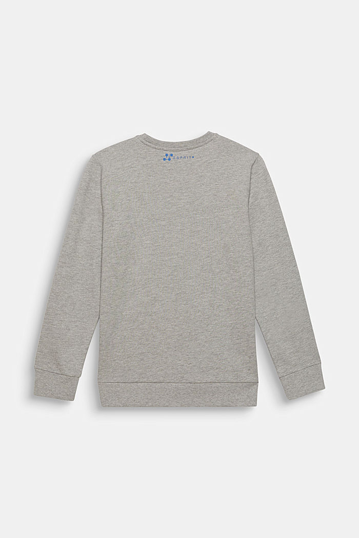 Melange sweatshirt with a positioned print