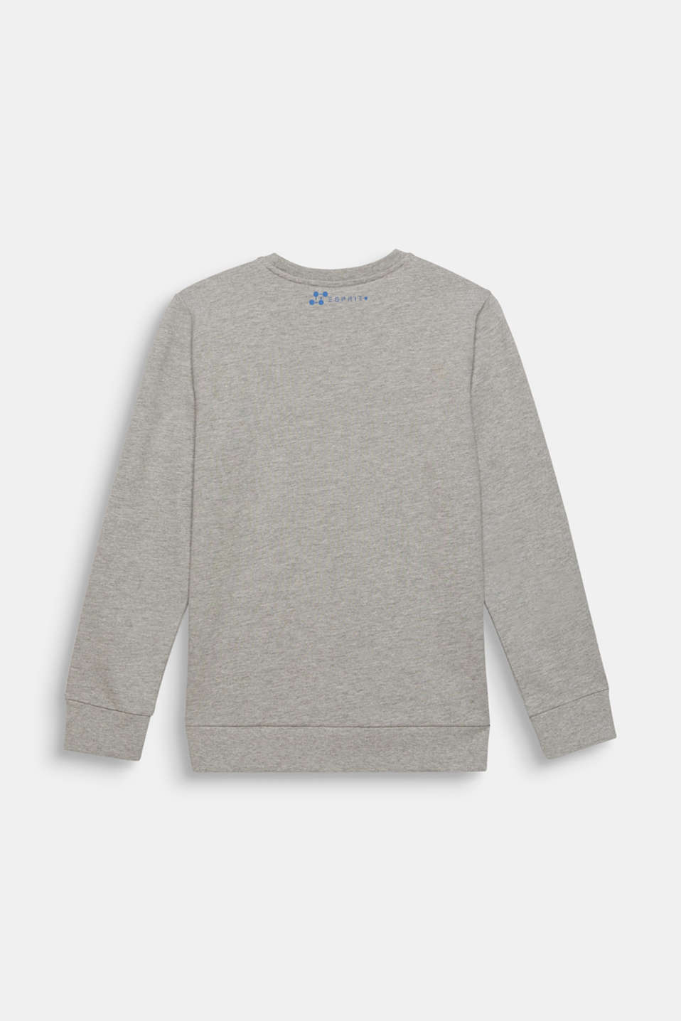 Melange sweatshirt with a positioned print, LCMID HEATHER GR, detail image number 1
