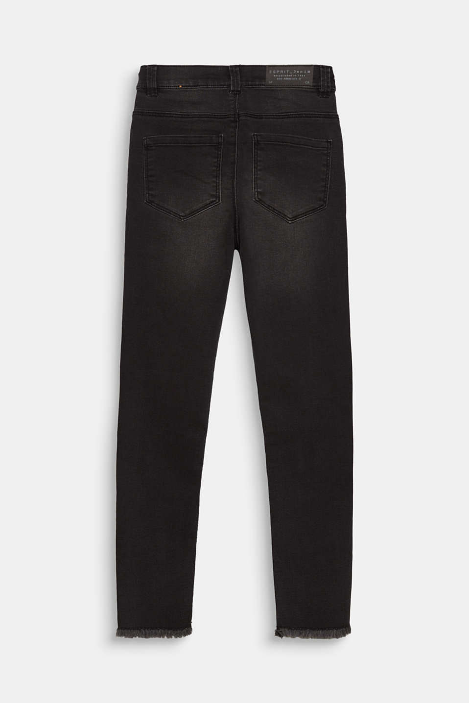 Jeans with a zip and frayed hem, adjustable waistband, LCBLACK DENIM, detail image number 1